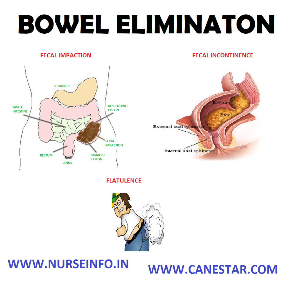 BOWEL ELIMINATION – Factors Affecting and Common Problems in Bowel Elimination (Bristol Stool Chart and Color of Stool and its causes)